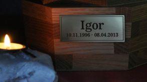Igor01220413