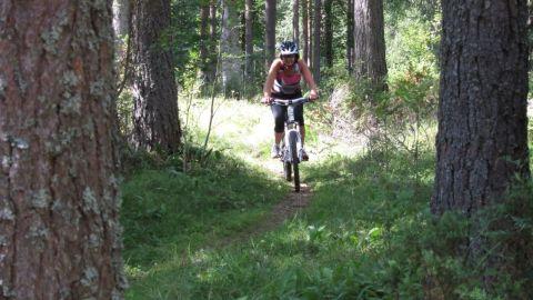 Cykling01100813