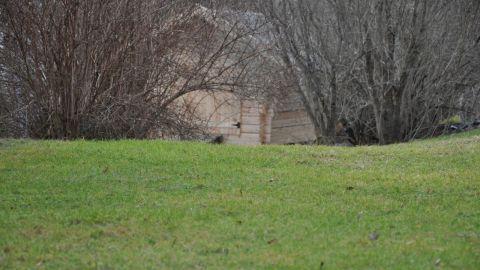 Vår gräsmatta 11 mars 2014.