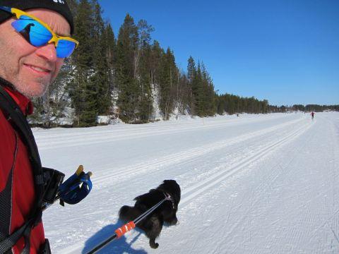 Ivar drar ivrigt. På Immeljärvis is.
