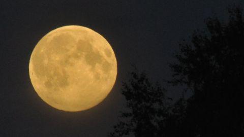 Supermåne i Smedsby 10 augusti 2014