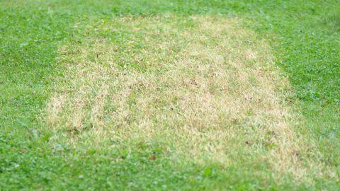 Gräset brändes under de korrugerade plastskivorna