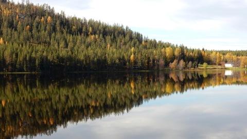 Immeljärvi 13.9.2016