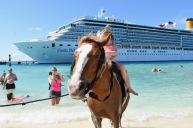 Hästar och människor samsas på stranden