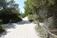 Mallorca02160619